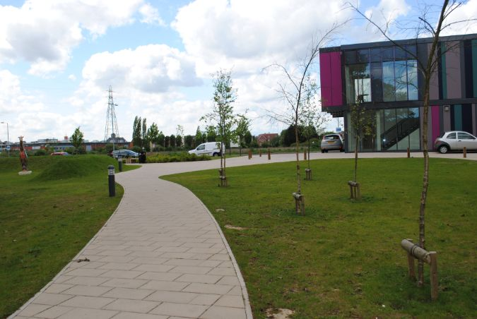 Green-tree topsoil is contributes to the environment at Essex Business School