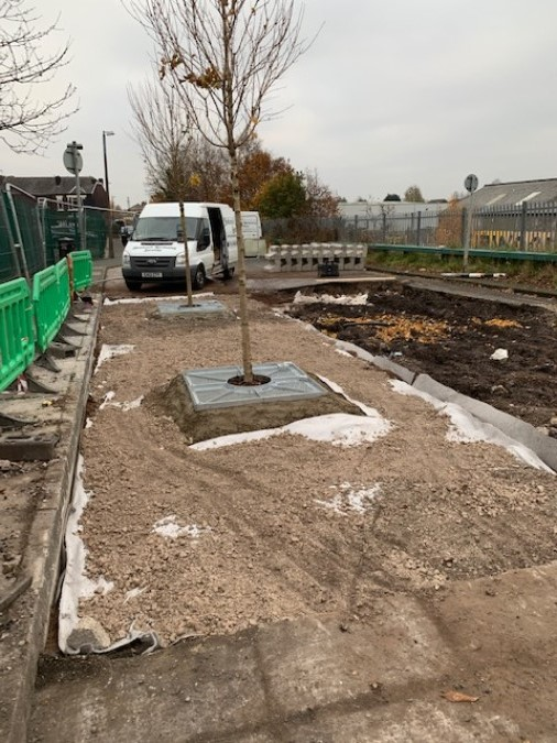 ​Urban Tree Planting Materials Supplied for Manchester Traffic Island