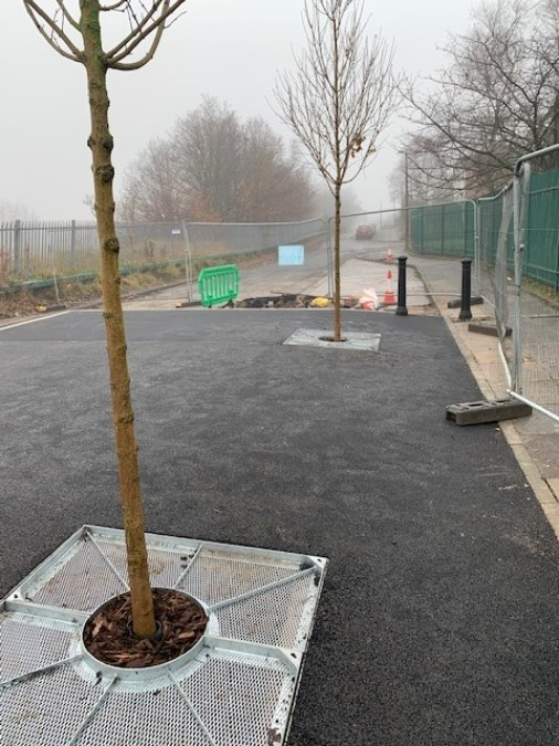 Urban Tree Planting Materials Supplied for Manchester Traffic Island